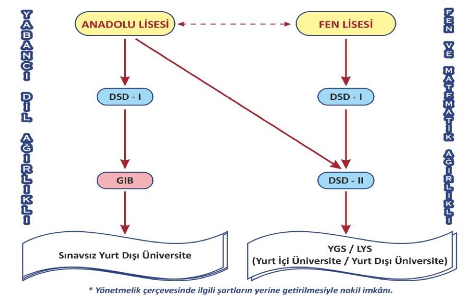 Anadolu ve Fen Lisesinde DSD süreci nasıl işler?